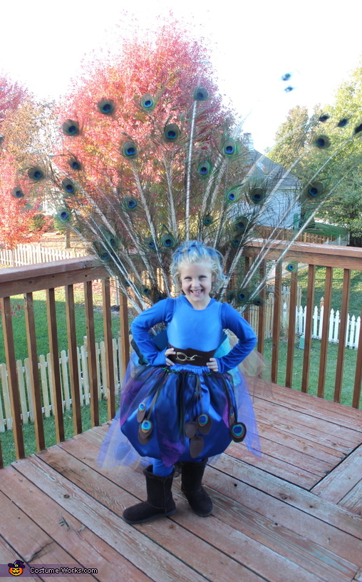 From the Front, Pretty Little Peacock Costume