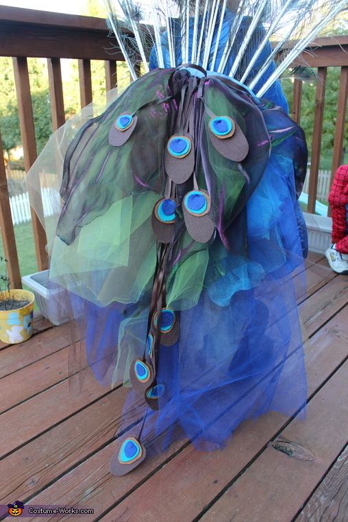 The Tail, Pretty Little Peacock Costume