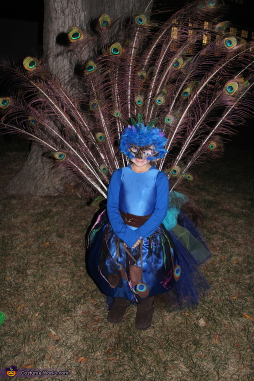 Strutting her Stuff, Pretty Little Peacock Costume