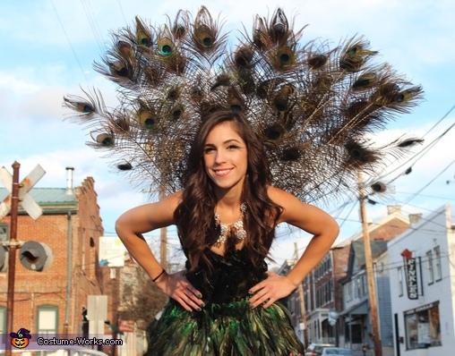 flirty feathers, Pretty Peacock Costume