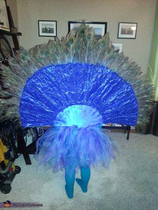 Back view, Pretty Peacock Costume