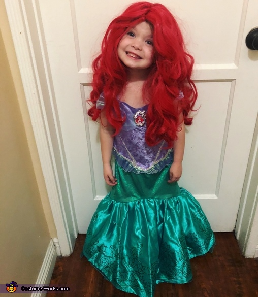 Pretty Princesses Homemade Costume