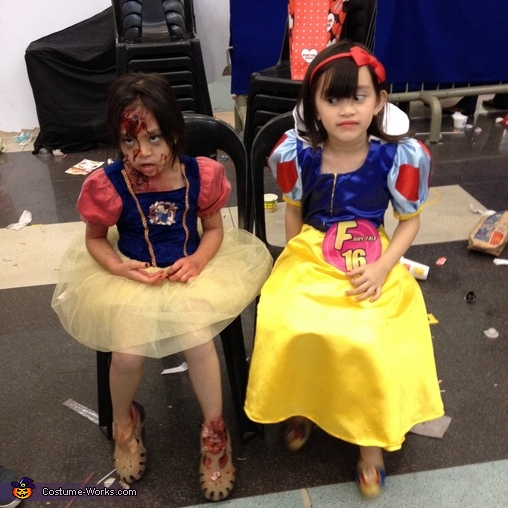 Pretty Snow White Costume