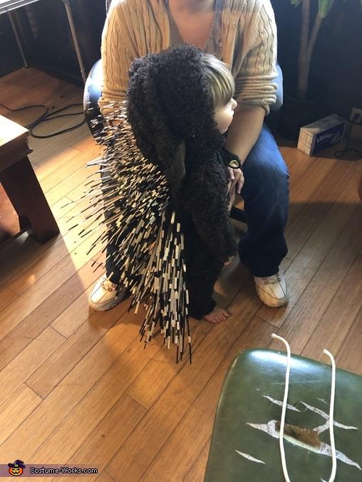 Prickly Porcupine Homemade Costume