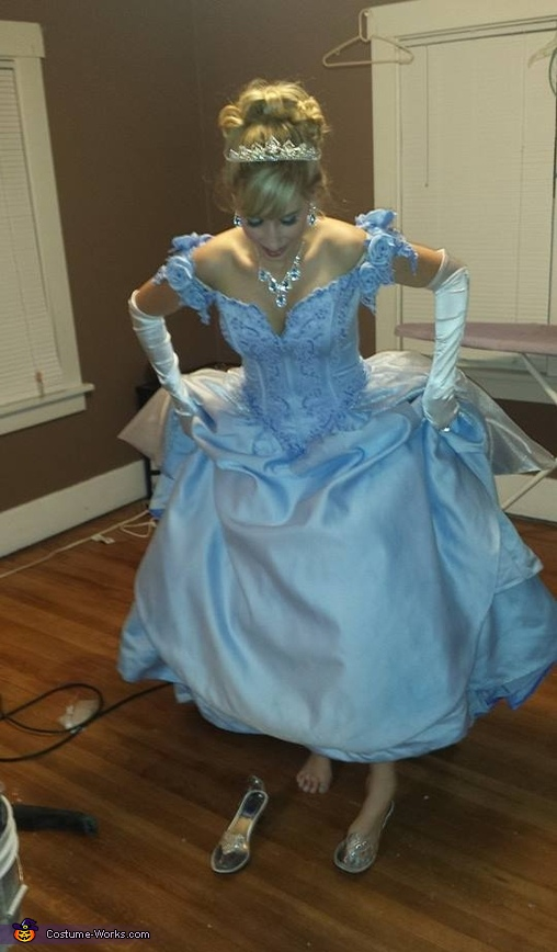Prince Charming And Cinderella Costume Photo 3 5