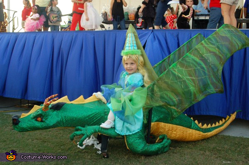 Princess on her Dragon - Homemade costumes for girls