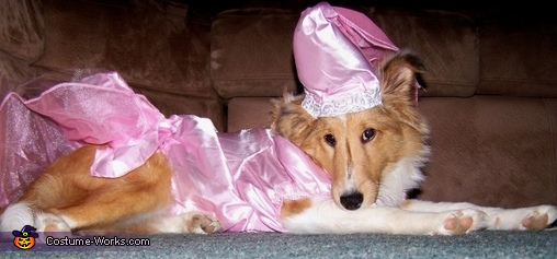 Princess Maya's first Halloween!, Princess Dog Costume