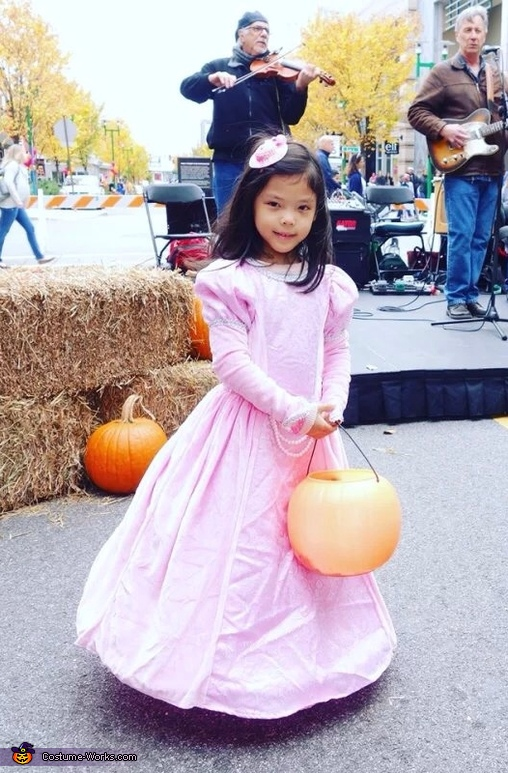 Princess Ella Costume