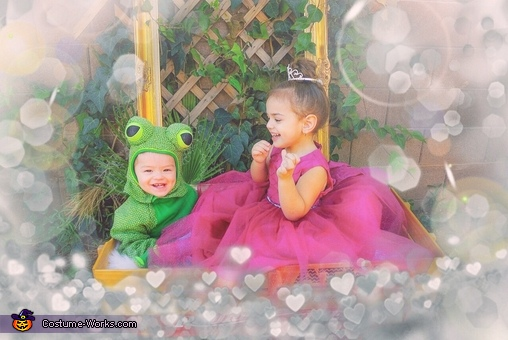 Princess and the Frog Costume
