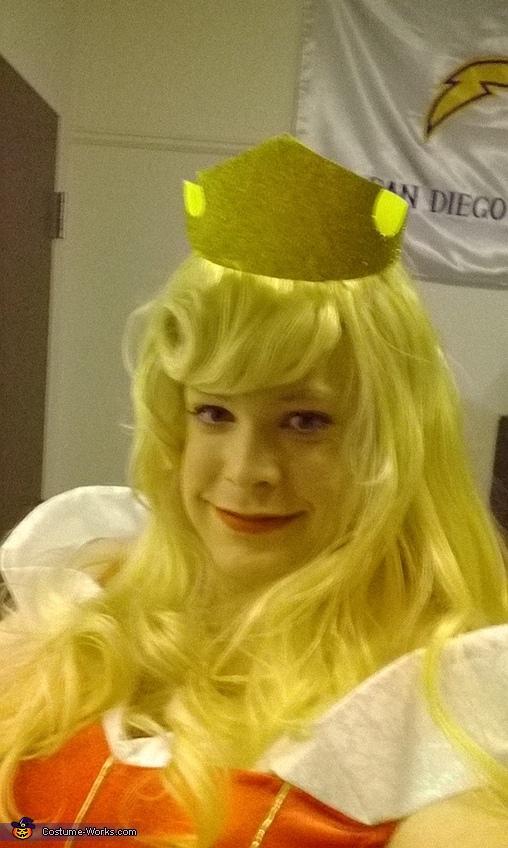 Sleeping Beauty Princess Aurora Costume