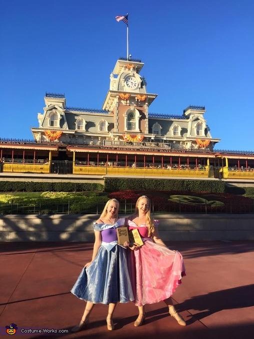 Princess Aurora Homemade Costume