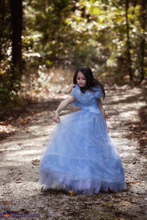 Princess, Princess Cinderella Costume