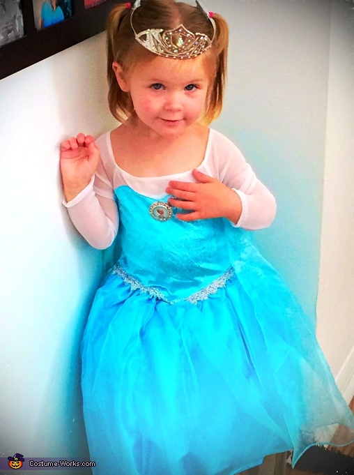 Princess Elsa Toddler Costume