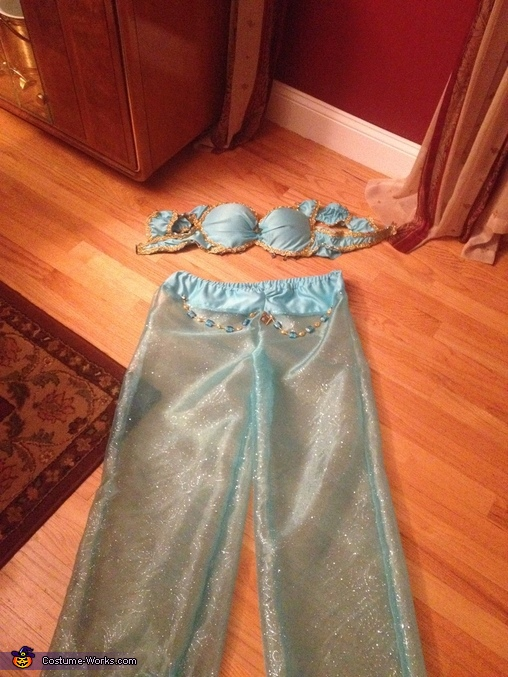 Finished product!, Princess Jasmine Costume