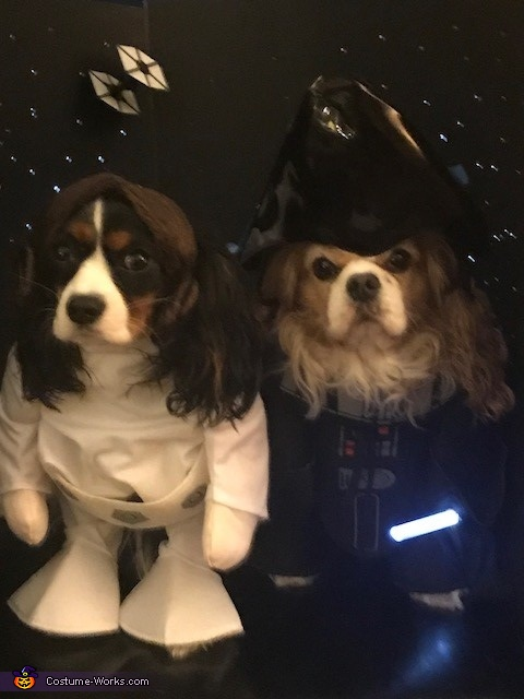 Princess Leia and Darth Vader Costume