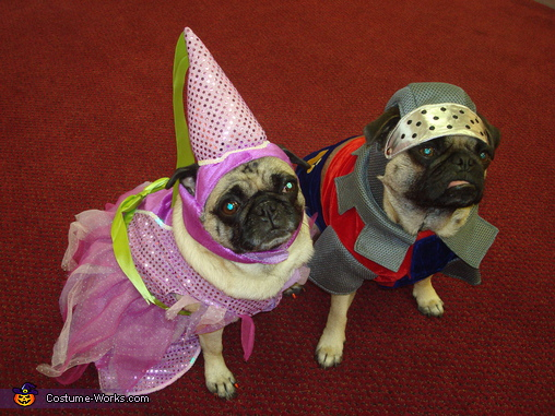Princess Miso and Sir Opa - Homemade costumes for pets