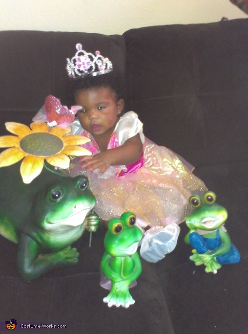 Mr. Frog i give you my magical touch!, Princess & Her Frogs Costume