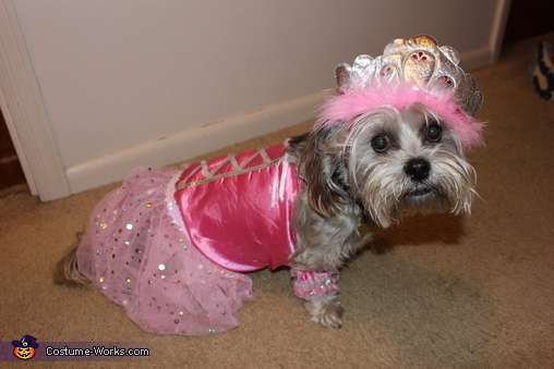 Princess Na'Ima Costume