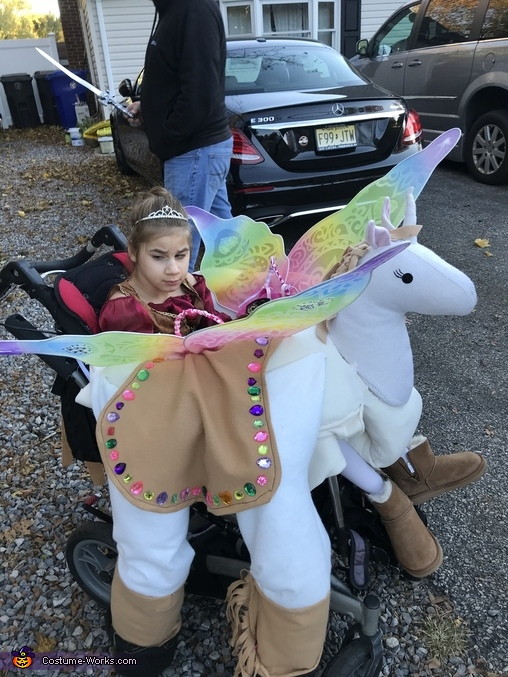 Princess riding Unicorn Costume