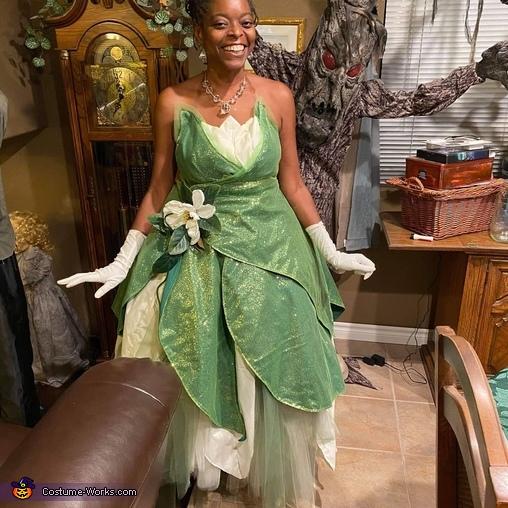 Princess Tiana, Princess Tiana Costume
