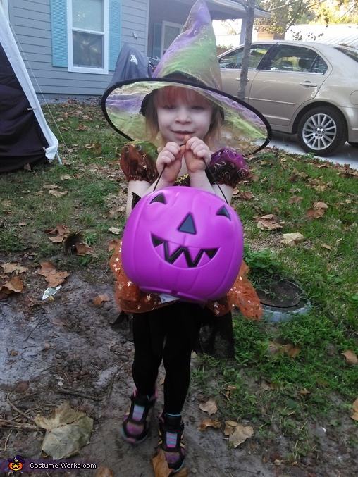 Princess Witch Costume