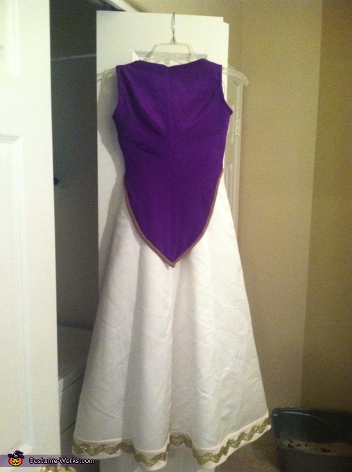 Back no accessories , Princess Zelda Costume