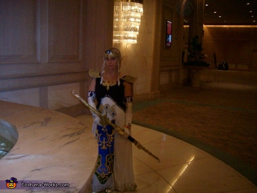 Princess Zelda Homemade Costume