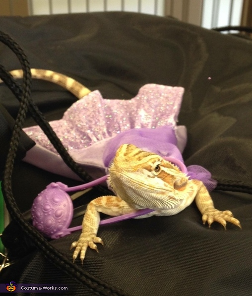 Prom Queen Bearded Dragon Costume