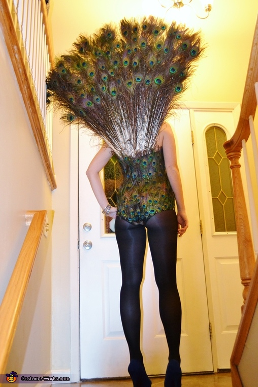 Proud Peacock Costume