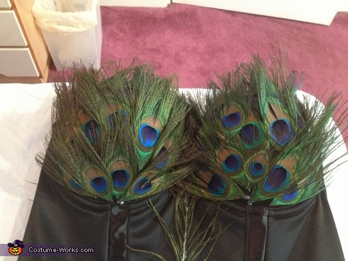 Started with the most important part first!, Proud Peacock Costume