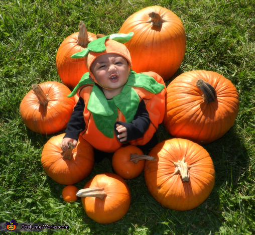 Pumpkin Munchkin Costume