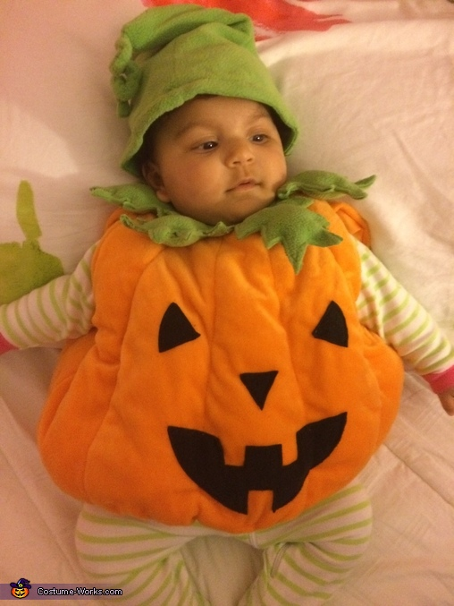 Pumpkin pie 2, Pumpkin Munchkin Costume