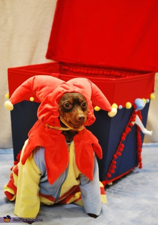 Pup in the Box Homemade Costume
