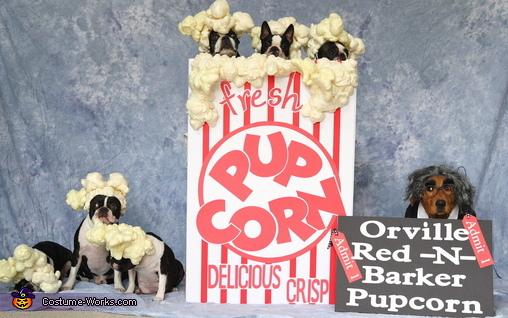 Orville Red-N-Barker Pupcorn Costume