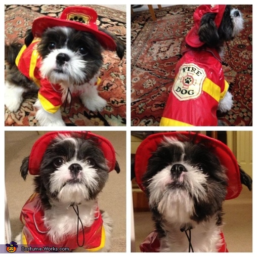 Puppy Fire Rescue Costume