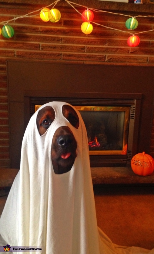 Puppy Ghost Costume