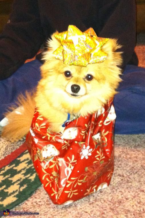 Puppy Present Costume