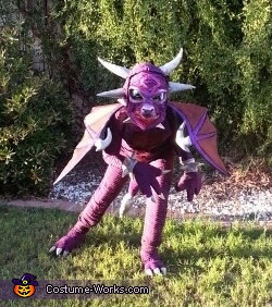 Purple Dragon in Defense Stance, Purple Dragon Costume
