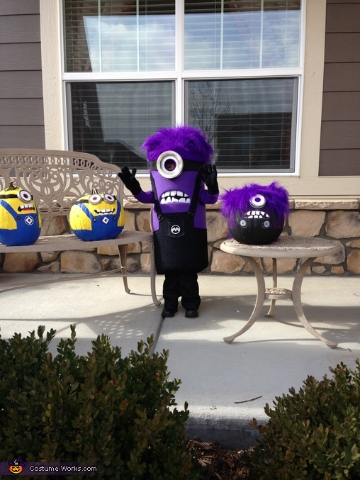 Hello Evil Minion!, Purple Minion Costume
