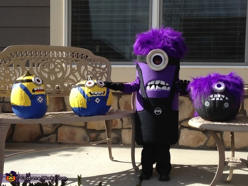 FUN!, Purple Minion Costume