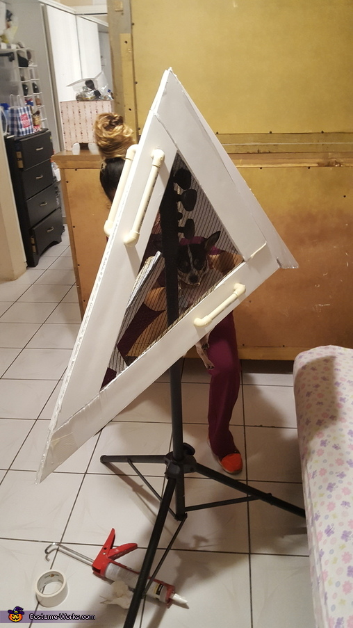 How it started, Pyramid Head Costume