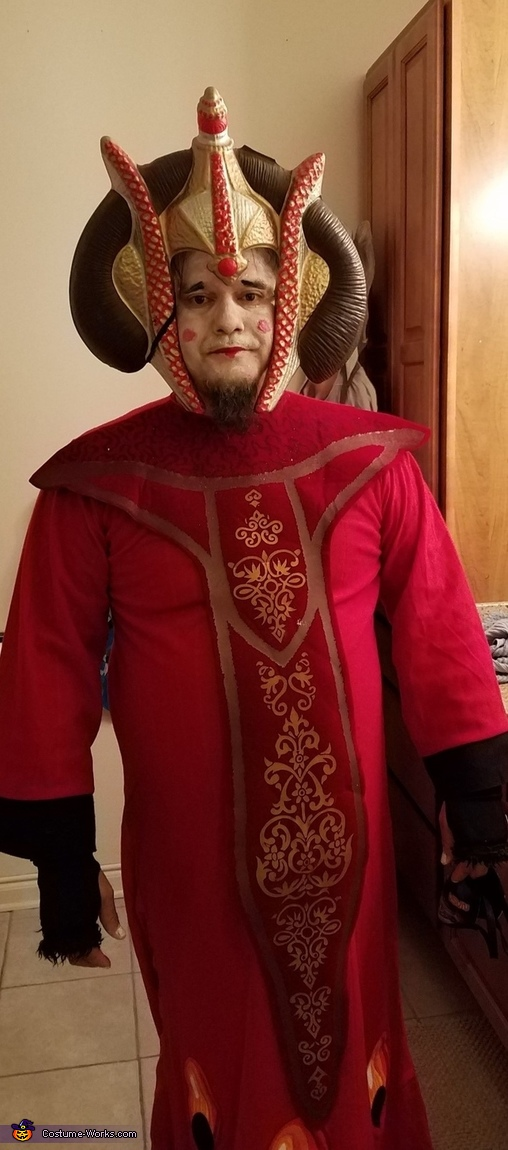 Queen Amidala from Star Wars Costume