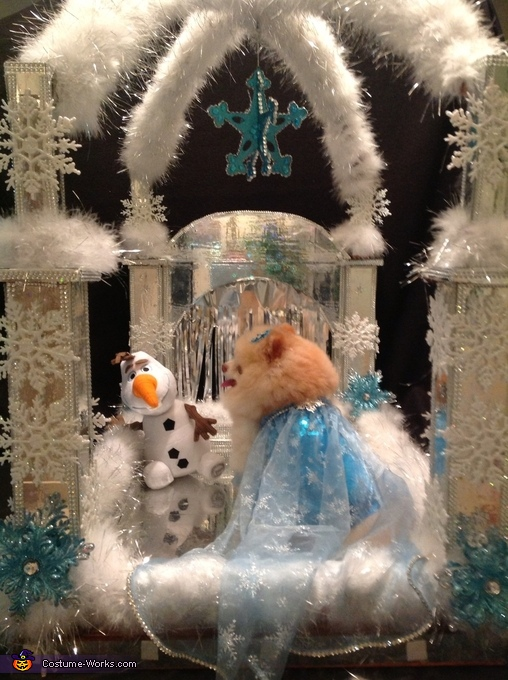 Queen Elsa from Frozen in her Ice Palace, Elsa from Frozen Dog Costume