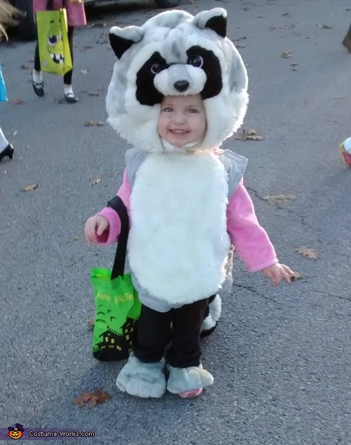 Raccoon Baby Costume