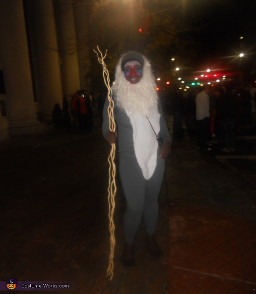 The whole costume, Rafiki Costume