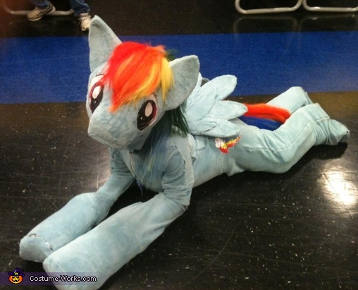 Rainbow Dash Pony Costume