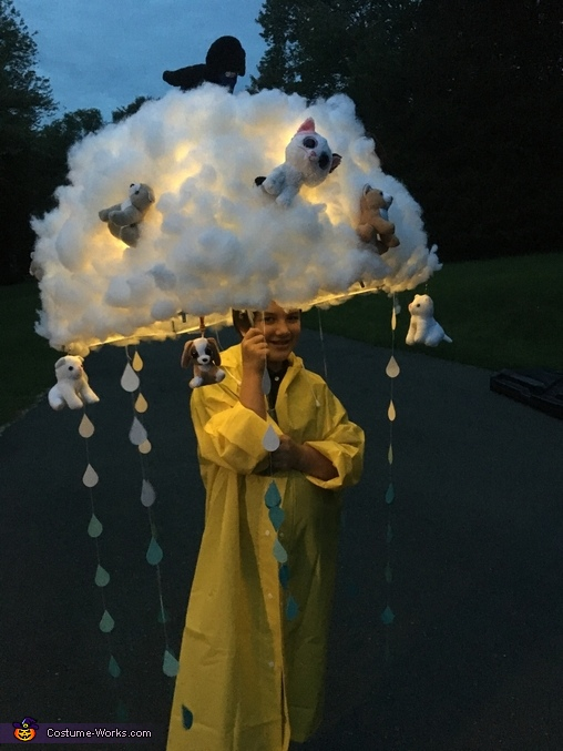 Raining Cats and Dogs Homemade Costume