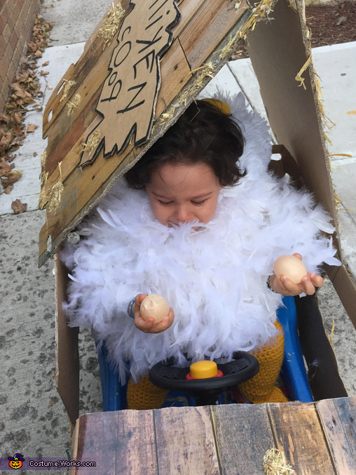 'But Mommy I want to hold them ALL!', Raising the Rooster Costume