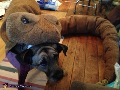 Rattlesnake Dog Homemade Costume
