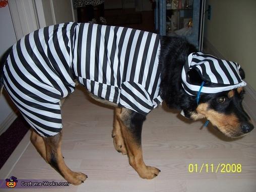 Razer's in jail, Target Employee & Bullseye Target Mascot Costume